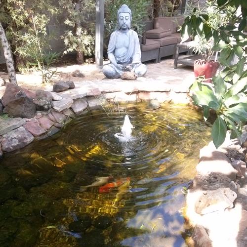 Estanque surtidor para estanque hermosos estanques de for Estanques en argentina