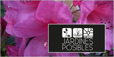 Jardinería - Diseño de jardines - Estanques en Moralzarzal