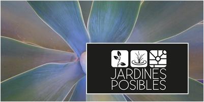 Jardinería - Diseño de jardines - Estanques en Guadalix de la Sierra