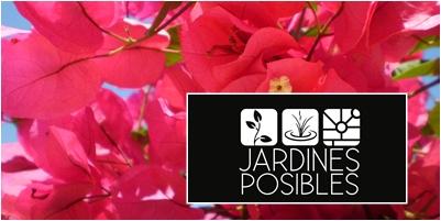 Jardinería - Diseño de jardines - Estanques en Las Tablas