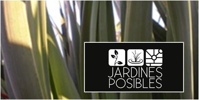 Jardinería - Diseño de jardines - Estanques en Los Molinos