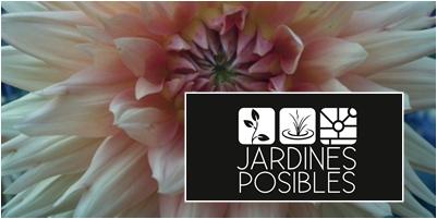 Jardinería - Diseño de jardines - Estanques en Mataelpino