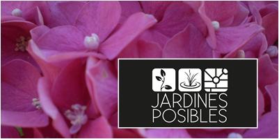 Jardinería - Diseño de jardines - Estanques en Montecarmelo