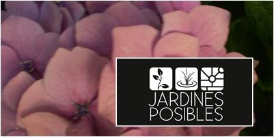 Jardinería - Diseño de jardines - Estanques en Pozuelo y Aravaca