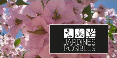 Jardinería - Diseño de jardines - Estanques en San Agustín del Guadalix