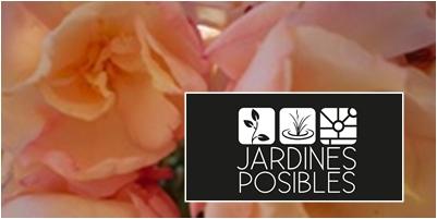 Jardinería - Diseño de jardines - Estanques en Torrelodones