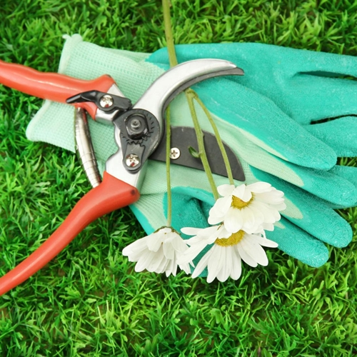 mantenimiento de jardines responsable