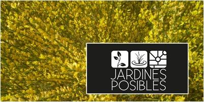 Mantenimiento de jardines en Guadalix de la Sierra