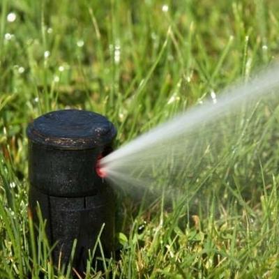 Reducir consumo de agua en el jardín